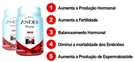 Andes Prime Red Maca Farmácia